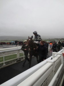 Cheltenham: Lady Buttons returns from losing my last tenner by thirteen lengths.