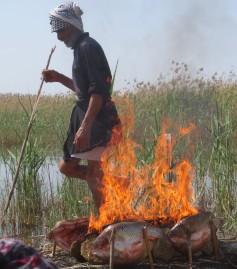 Fiery danger fish