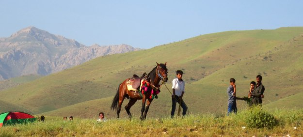 Springtime in the Kurdish mountains: these are a few of my favourite things