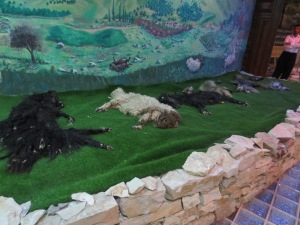 Dead sheep diorama