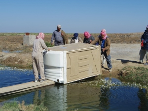 The delicate job of getting the site portaloo over our irrigation canal foot bridge