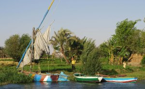 River life, Middle Egypt