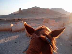 Palmyra in 2008. I mostly seem to have used a horse back then, presumably because I was too drunk or lazy to walk